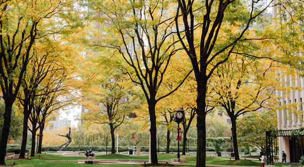The plaza on the Lincoln Center campus in the fall.