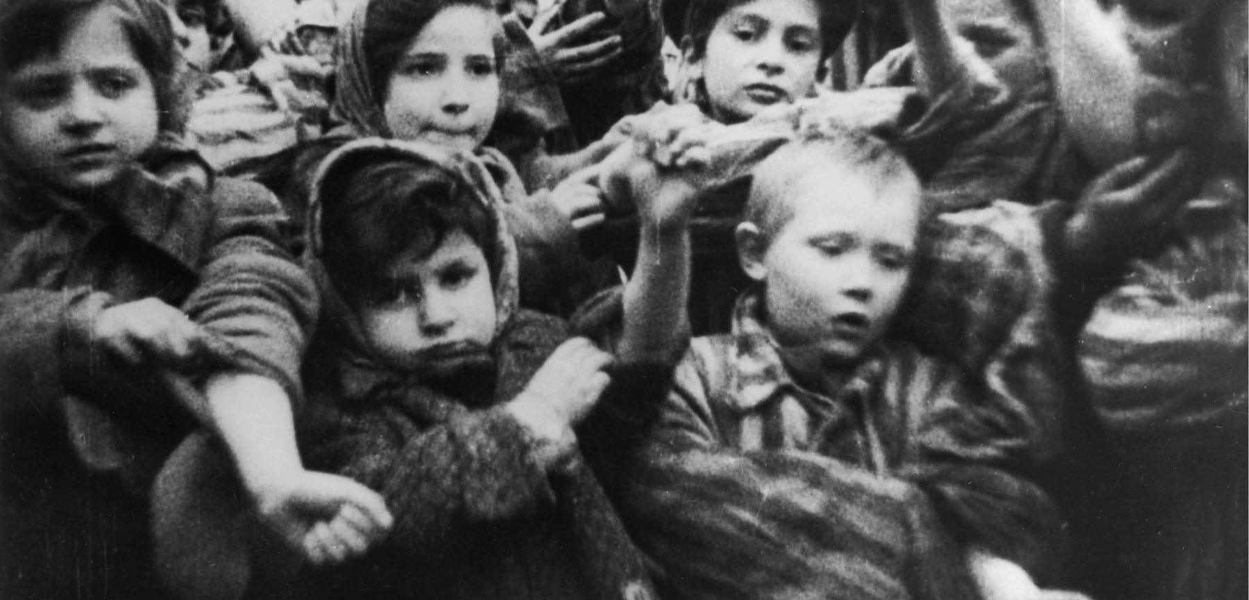A Child of the Holocaust Reclaims a Resilient Heritage