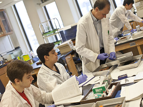 Students and professor working in the lab at the Lincoln Center campus