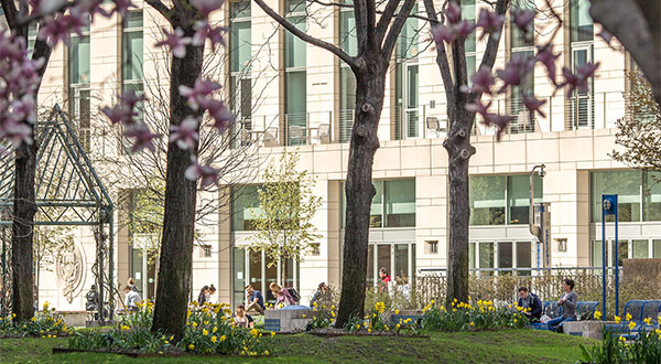 Lincoln Center campus in the Spring