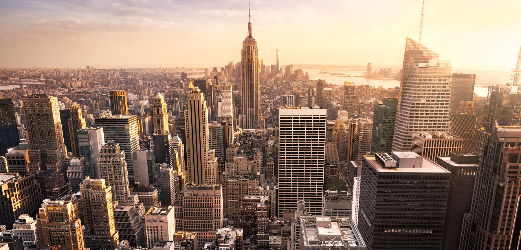 New York City Business Immersion