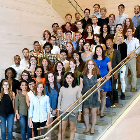 Fordham Law School Stein Scholars, Fall 2015