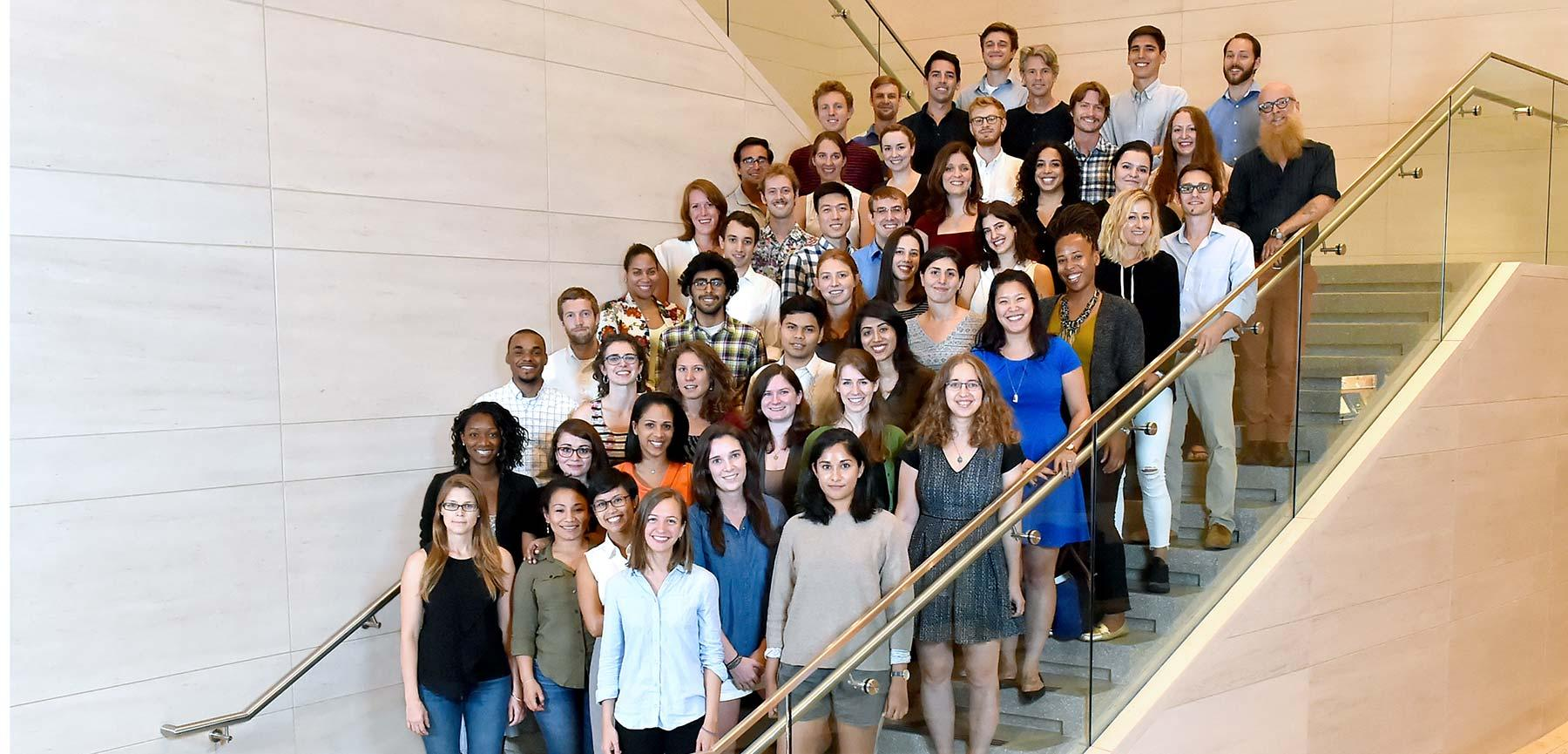 Fordham Law Stein Scholars Fall 2015