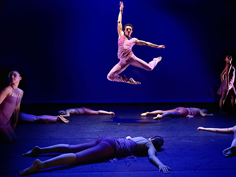Students from the AileyFordham BFA Program