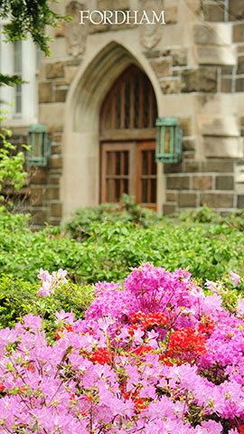 Vertical zoom background flowers and campus building