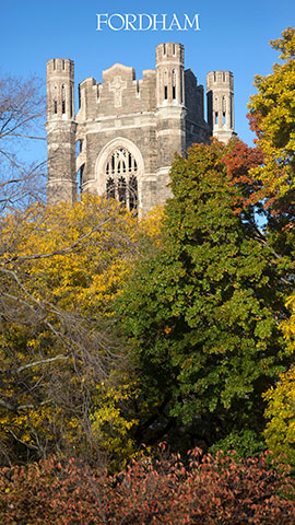 Vertical zoom background university church behind trees