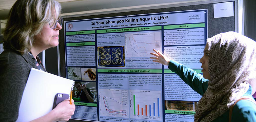 Undergraduate Research Fairs Delve Deep