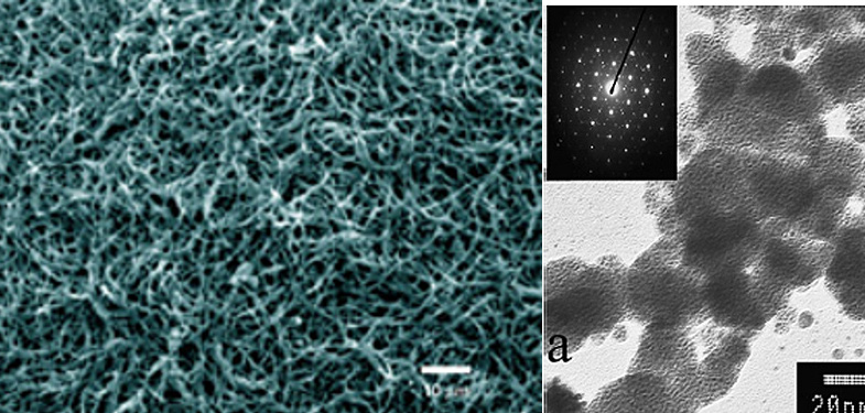 Seemingly amorphous nanomaterials can exhibit crystalline characteristics