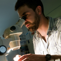 Male Student at Microscope - SM