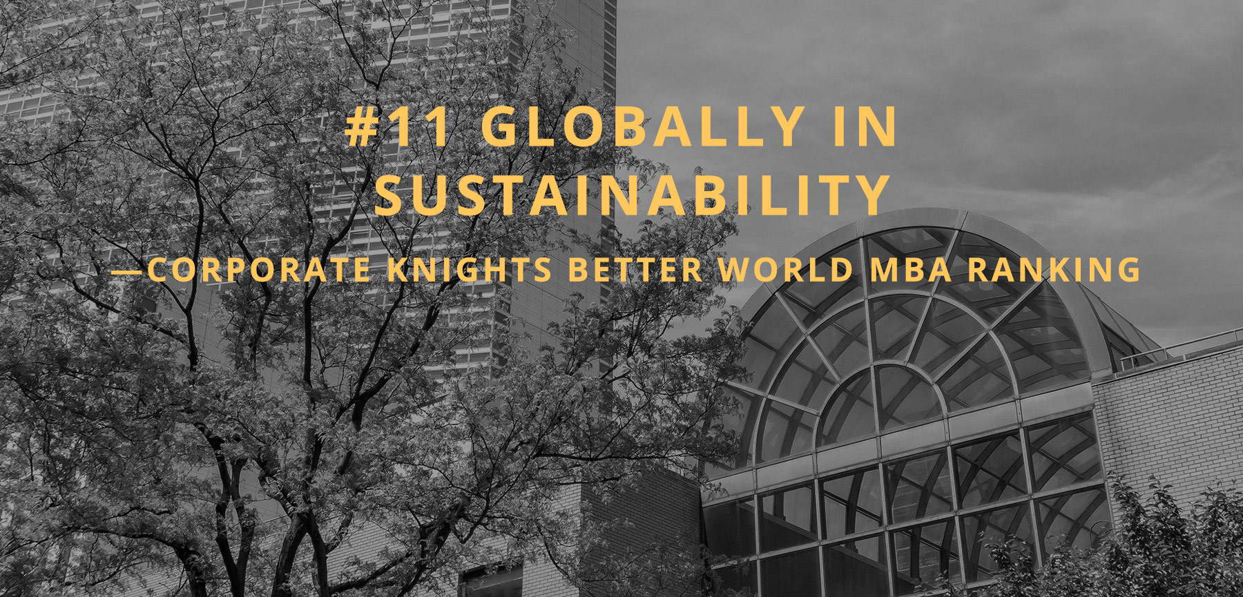 #11 globally in sustainability
