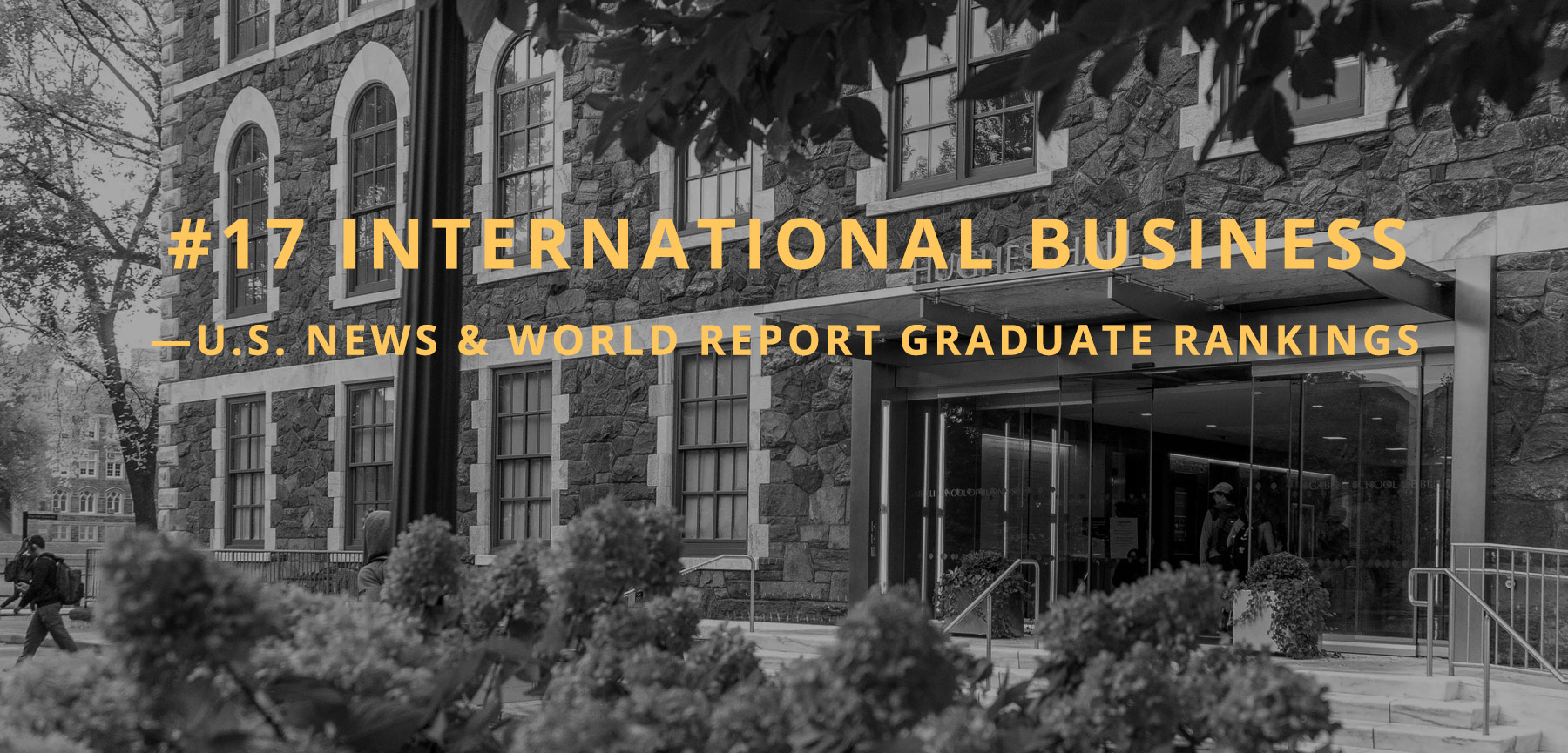 #17 international business